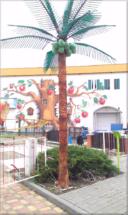 Palma 1