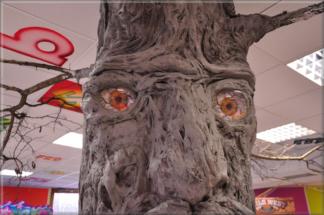 Plastika stromu 1